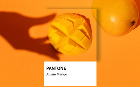 Get Behind Aussie Mangoes & Their Bid for Pantone Global Colour of The Year