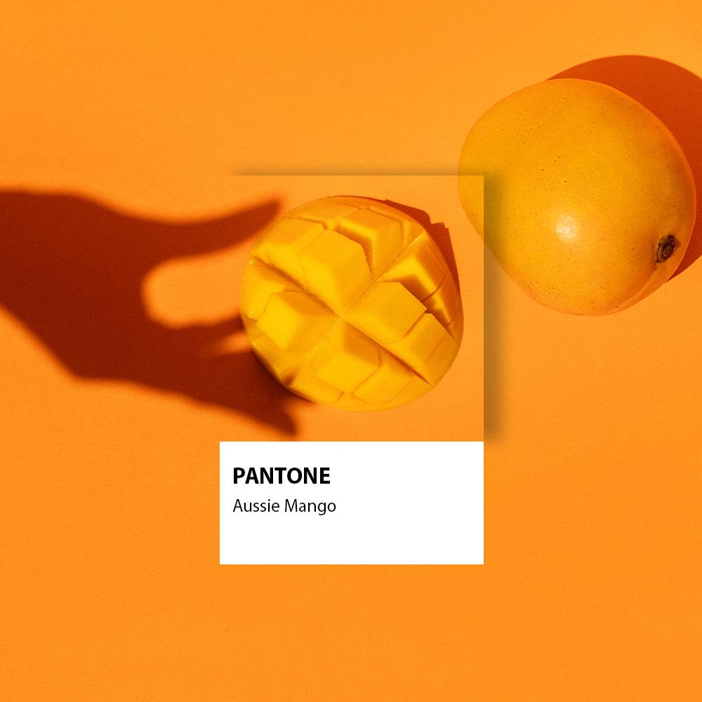 Get Behind Aussie Mangoes & Their Bid for Pantone Global Colour of The Year